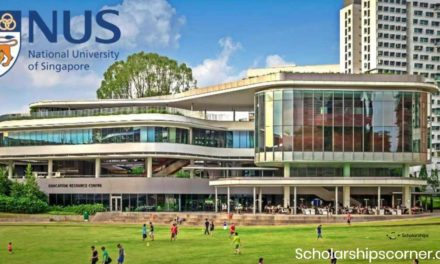 NUS Research Scholarship at National University of Singapore | Fully Funded