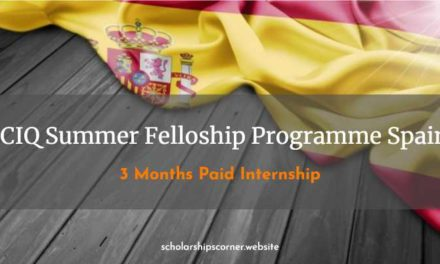 ICIQ Summer Fellowship Programme 2018 in Spain | 3 Months Paid Internship