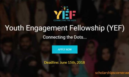 Youth Engagement Fellowship YEF for Undergraduate Pakistani Students