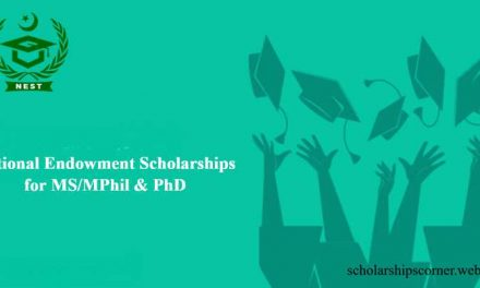 NEST Scholarships 2018-19 for MS/MPhil & PhD Pakistani Students
