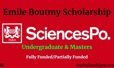 Emile Boutmy Scholarship 2019 for Undergraduate and Master's Students
