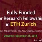 Research Summer Fellowship
