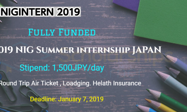 2019 NIG Summer Internship Japan – Fully Funded