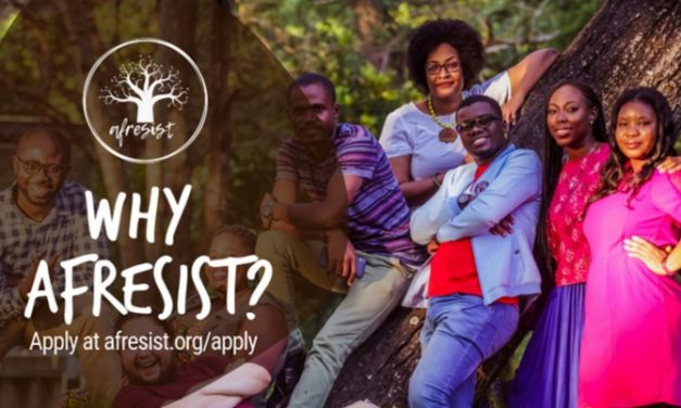 Afresist Youth Leadership Program 2019 for Young Africans [Fully Funded]