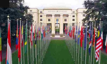 United Nations Graduate Study Programme 2019 in Switzerland