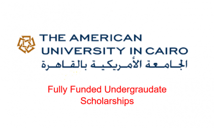 Fully Funded Undergraduate Scholarship at the American University in Cairo, Egypt