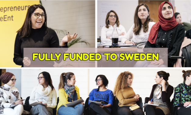 Swedish Institute Leadership Program 2020 in Sweden [Fully Funded]