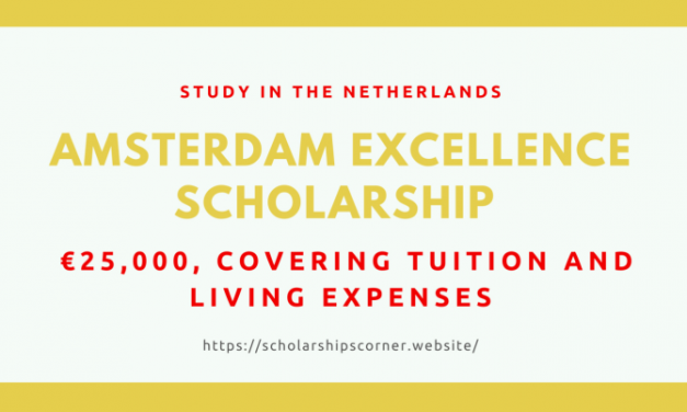 Amsterdam Excellence Scholarship 2020 in the Netherlands