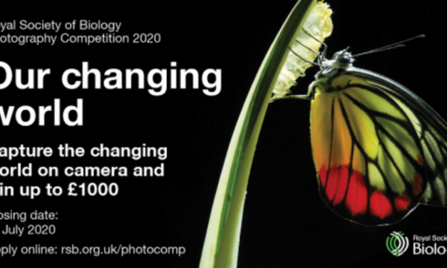Royal Society of Biology Photography Competition 2020 – Win Cash Prizes