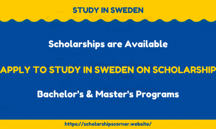 Study in Sweden in Spring 2021 on Scholarship – Swedish Scholarships